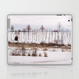 Snow on the Ground Laptop & iPad Skin