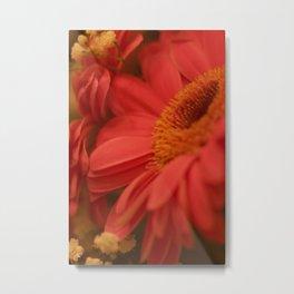 Flower Beam Metal Print