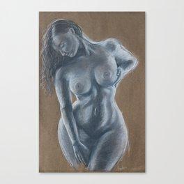 A Womans beauty Canvas Print