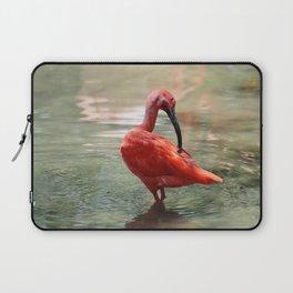 Scarlet Ibis Laptop Sleeve