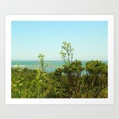 California Coast Floral I Art Print