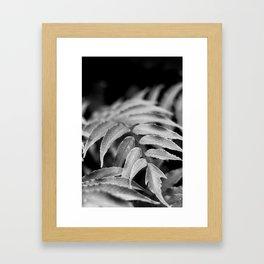 Deep In - leaves & fern Framed Art Print