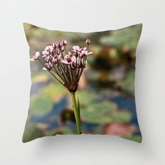 Pretty Pinks Throw Pillow