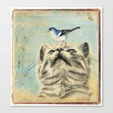 Bird house Canvas Print