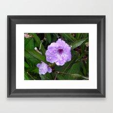 Flower Study I Framed Art Print
