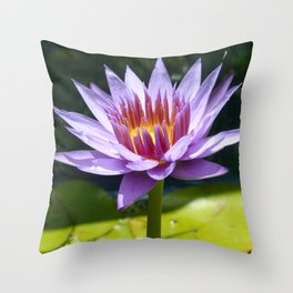 Nymphaea 'Rhonda Kay' II Throw Pillow