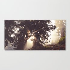 dawn in the day Canvas Print