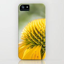 Leuchten im Sommer iPhone Case