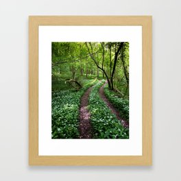 Wild Garlic Road Framed Art Print
