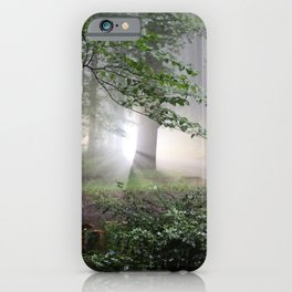 Creepy Light in the Forest iPhone Case