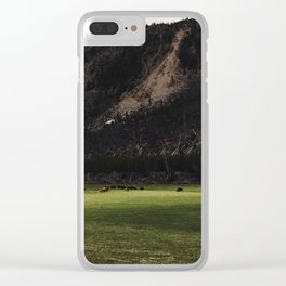 Buffalo in the Meadow Clear iPhone Case