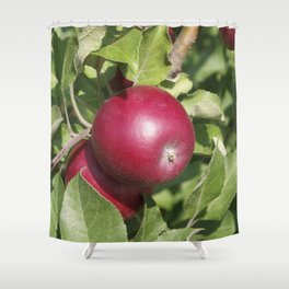 Apple Almost Ready Shower Curtain