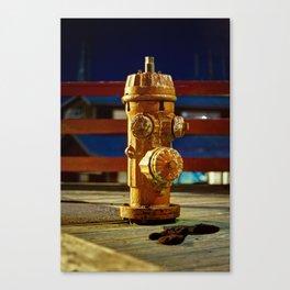 Hydranty Canvas Print