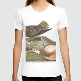 Esquimaux curlew, Birds of America, Audubon Plate 208 T-shirt