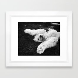 Playing in the Grass Framed Art Print