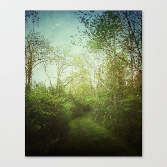 Follow Your Life Path Canvas Print