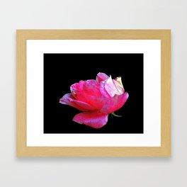 Think Flowers - The Last One Framed Art Print