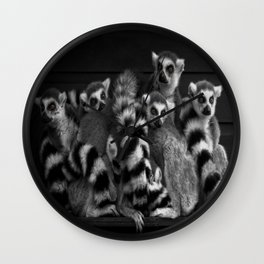Gang Of Ring-Tailed Lemurs Wall Clock