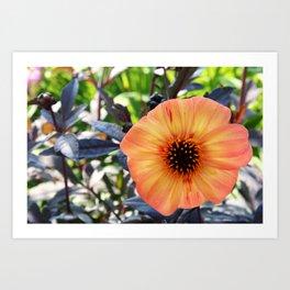 Burst of Warm Flowers Art Print