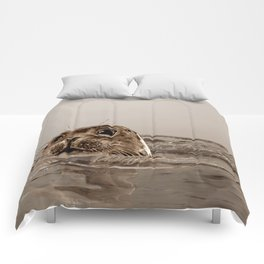 The SEAL Comforters