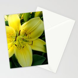 Yellow Lily Stationery Cards