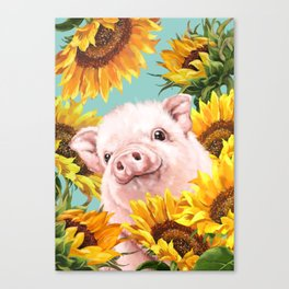 Baby Pig with Sunflowers in Blue Canvas Print