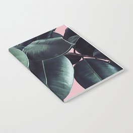 Ficus Elastica #14 #CoralBlush #decor #art #society6 Notebook