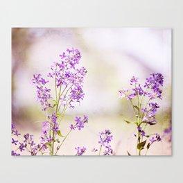 Purple Nature Photography, Lavender Floral Botanical Photography, Light Purple Nature Art Canvas Print