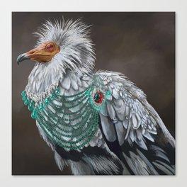 Necrophagy: Egyptian Vulture Canvas Print
