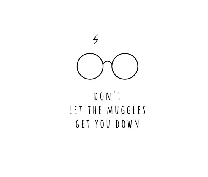 Don't Let The Muggles Get You Down Metal Travel Mug