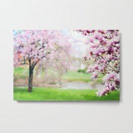 Stealing Magnolias Metal Print