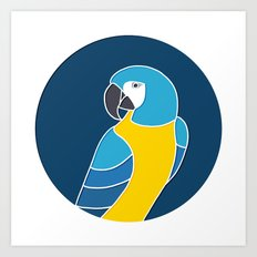 Blue and Yellow Parrot on Dark Blue Art Print