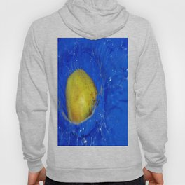Splash of  an apple Hoody