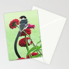 Whydah loving Zinnia flowers Stationery Cards