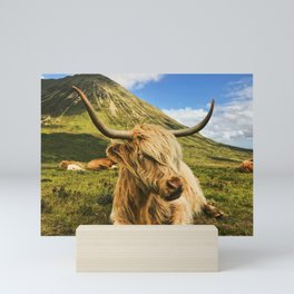 Scottish Cow Mini Art Print