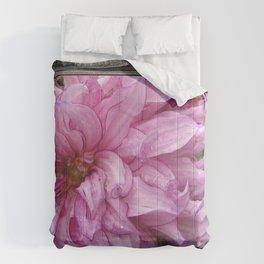 Dahlia named Annette C. Comforters