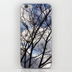 Madness iPhone & iPod Skin