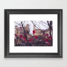 Blood Red Autumn Framed Art Print