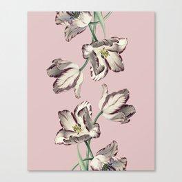 Spring Tulipa Canvas Print
