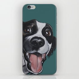 Maeby the border collie mix iPhone Skin