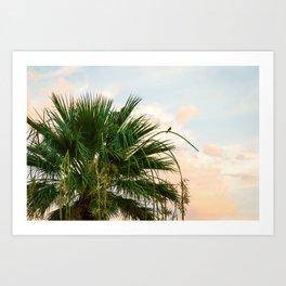 Little Bird on a Palm Tree at Sunrise Art Print
