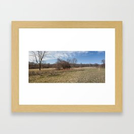 Spring Forest Field Framed Art Print