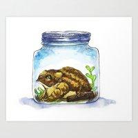 Mr. Toad's Prison Art Print