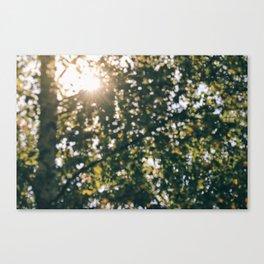 Memory of Summer Canvas Print
