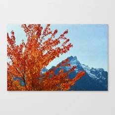Near or Far Canvas Print