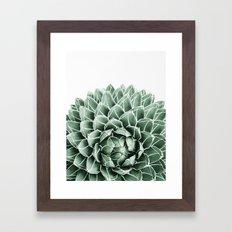 Succulent splendour Framed Art Print