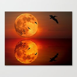 On Sunset Wings Canvas Print