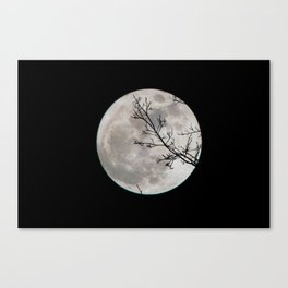 Halloween's Full Moon (Black and White) Canvas Print