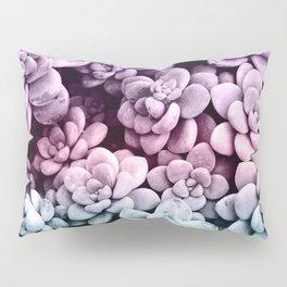 Dreamy Succulents #1 #pastel #decor #art #society6 Pillow Sham