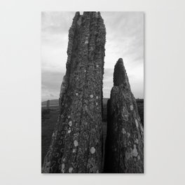 Two Stones in Time Canvas Print